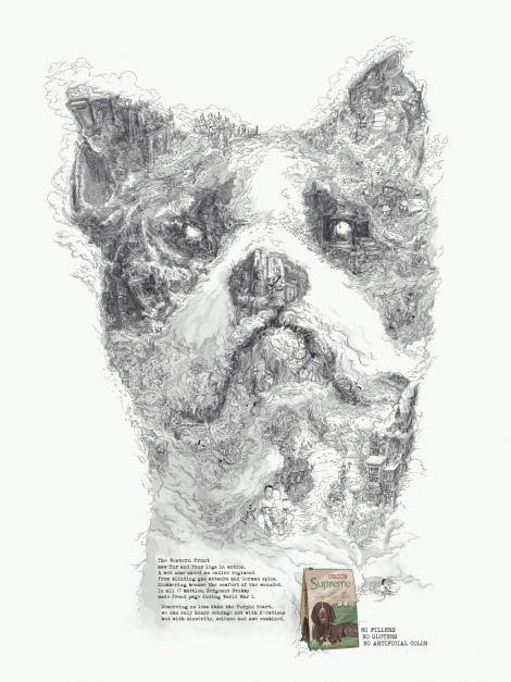hero dogs stubby