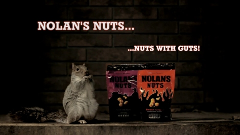 Nolans Nuts Squirrel