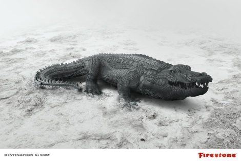 Firestone Alligator